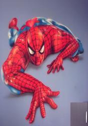 spider-3.jpg